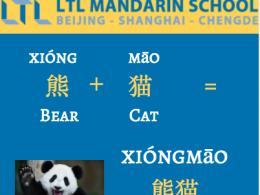 Panda - Chinees Leren met LTL