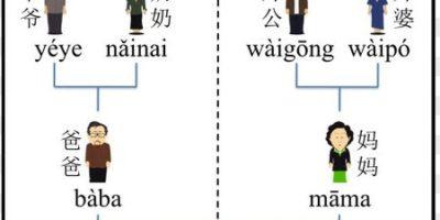 De Onnodig Ingewikkelde Chinese Stamboom